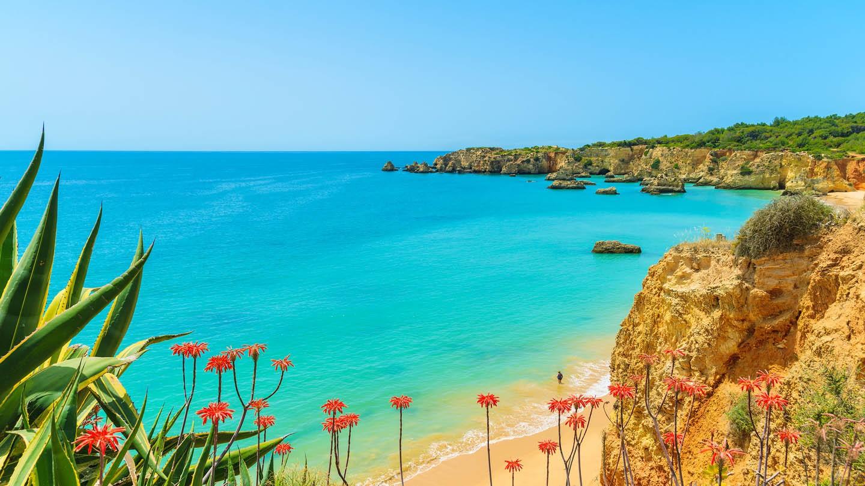 Be Smart Terrace Algarve - Algarve