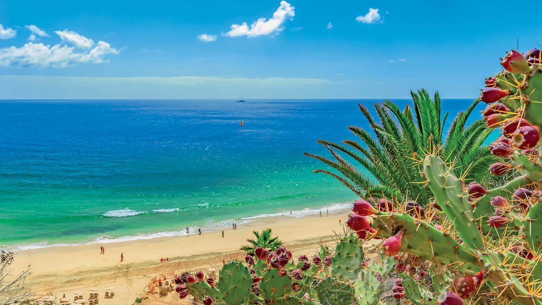 Iberostar Playa Gaviotas - Fuerteventura